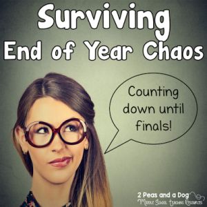 Year End Teacher Survival Tips
