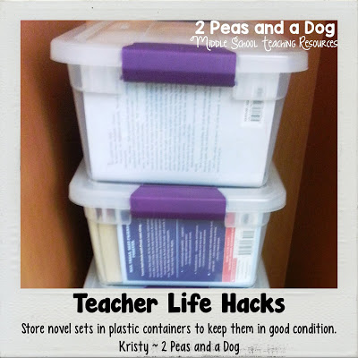 Don't let your expensive novel and literature circle sets get destroyed. Try this storage solution in your English Language Arts classroom.