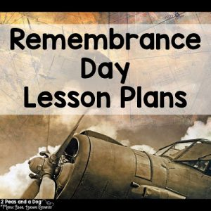 Remembrance Day Lessons For All Grades