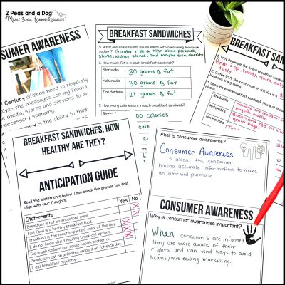 Consumer Awareness Media Literacy Lesson Plan